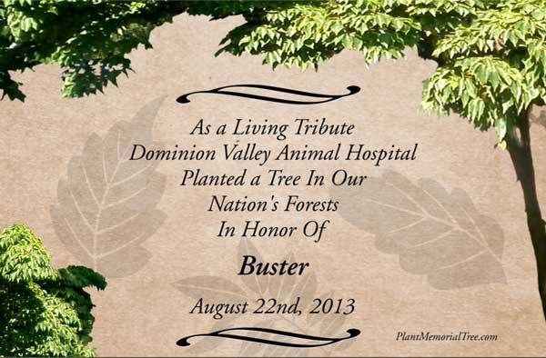 Memorial Tree Card